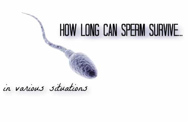 how long does sperm live outside the body